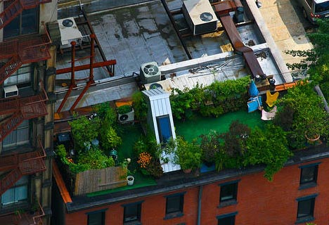 green-rooftop-deck-residence